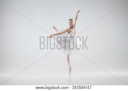 Winter Alive. Young Graceful Classic Ballerina Dancing On White Studio Background. Woman In Tender C