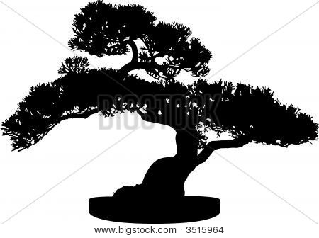 Bonsai Tree Silhouette