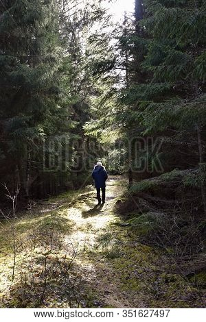 Man Walks On A Mossy Country Road Deep In The Dark Forest