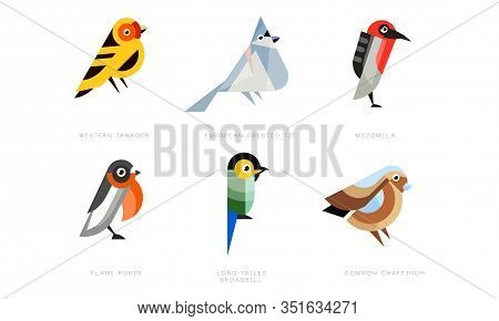Colorful Stylized Birds Collection, Western Tanager, European Crested Tit, Myzomela, Flame Robin, Lo