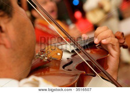 Mariachi Violin Performer