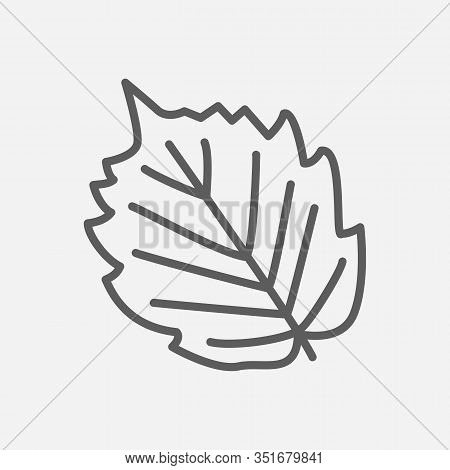 Hazel Leaf Icon Line Symbol. Isolated Vector Illustration Of Icon Sign Concept For Your Web Site Mob