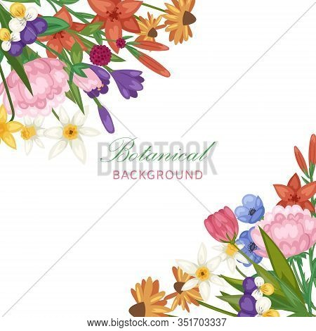 Wedding Invitation Floral Bridal Flowers Vector Ilustration. Field Or Garden Flowers, Anemone, Peony
