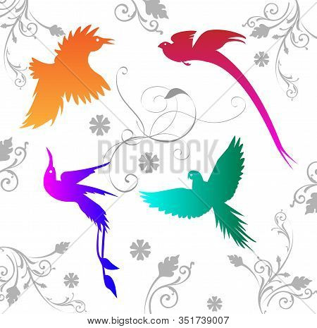 Vector Background With Different Colored Birds Of Paradise And Ornament. For Design