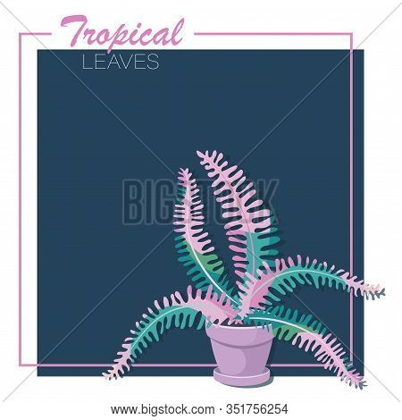 Tropical Fern Leaves. Frame. Vector Isolated Fern Flower On A Dark Background. Decorative Indoor Pla