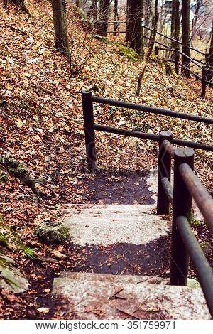 Autumn Forest Park Stair Scene. Autumn Fog Forest Stairway. Forest Stairway In Autumn Forest Mist Sc