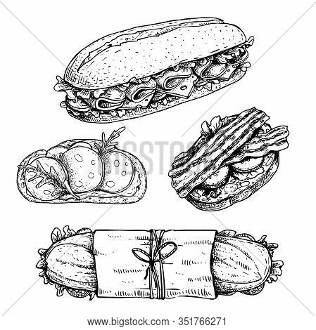 Hand Drawn Sketch Sandwiches Set.  Submarine, Ciabatta, Sandwiches With Lettuce Leaves, Salami, Chee