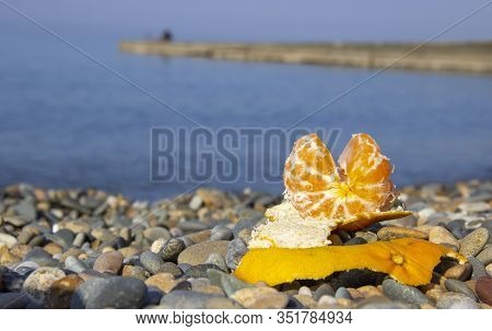 Orange Lies On A Pebbly Beach Against The Sea. Ecotourism And Consumption Of Natural And Organic Fru