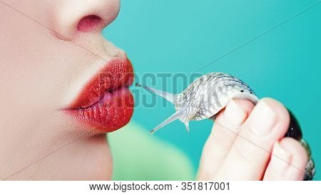 Spa And Wellness. Cosmetics And Snail Mucus. Cosmetology Beauty Procedure. Girl And Cute Snail. Skin
