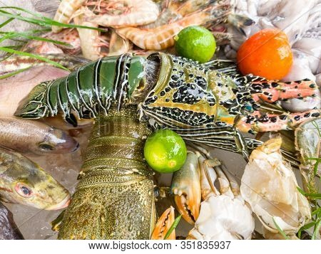Closeup Image Of Big Assortment Of Seafood On The Market Counter