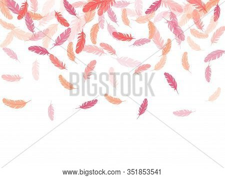 Decorative Pink Flamingo Feathers Vector Background. Soft Plumelet Native Indian Ornament. Detailed