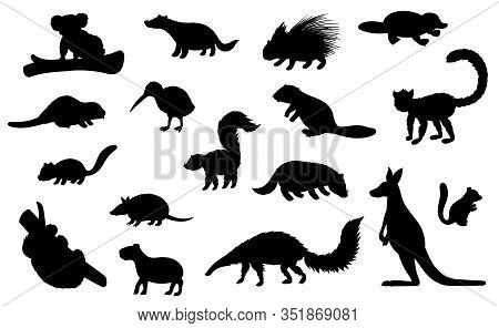 Wild Animal Black Silhouettes Of Hunting Sport And Zoo Vector Design. Kangaroo, Koala Bear, Badger A