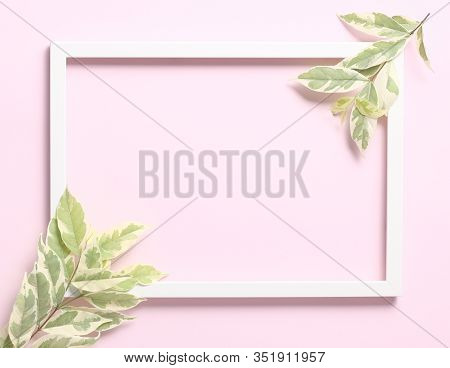 Nature Soft Background - Beautiful Leves And White Photo Frame