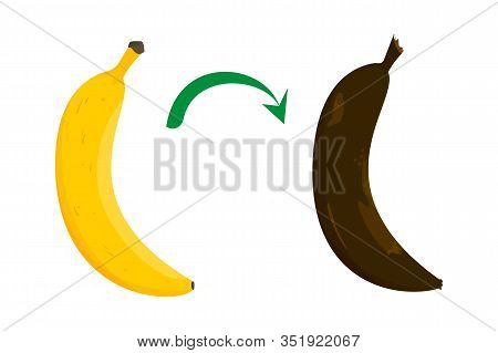 Banana Ripeness Stages Vector Isolated. From Ripe To Rotten. Yellow And Brown Banana Skin. Healthy N