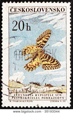 Postage stamp Czechoslovakia 1961 Southern Festoon, Butterfly