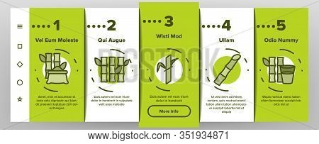 Sugar Cane Agriculture Onboarding Icons Set Vector. Rum Bottle, Water Glass, Bio Organic Sugar Sweet