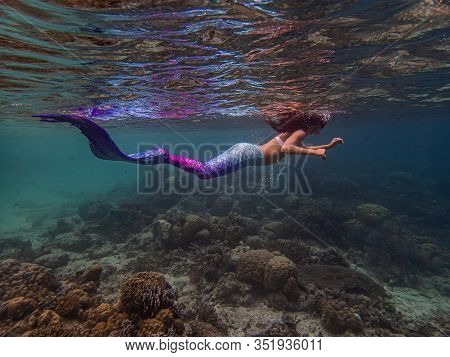 Young Female Free Diver Swims Underwater In A Colorful And Sexy Mermaid Costume.
