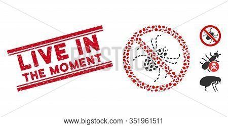 Distressed Red Stamp Seal With Live In The Moment Caption Between Double Parallel Lines, And Mosaic