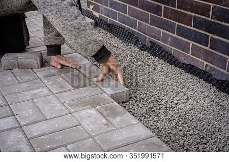 Unidentified Worker Is Laying Gray Concrete Paving Slabs In House Courtyard. Professional Bricklayer