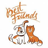 Best Friends little pets animals dog cat puppy kitten poster