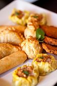 Thai entrees on a plate, spring rolls, curry puff, money bags, fish cake, dim sim. poster