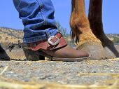 Cowboy boots rusty spurs and horses hooves on dirt and straw ranch background. poster