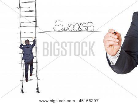 Business Man In Career