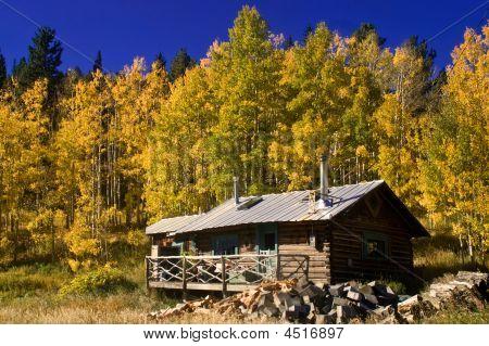 Country Babin In Autumn