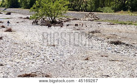 Rustic scenery somewhere near Trikala city at Europe Greece