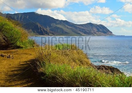Hiking path and ocean view