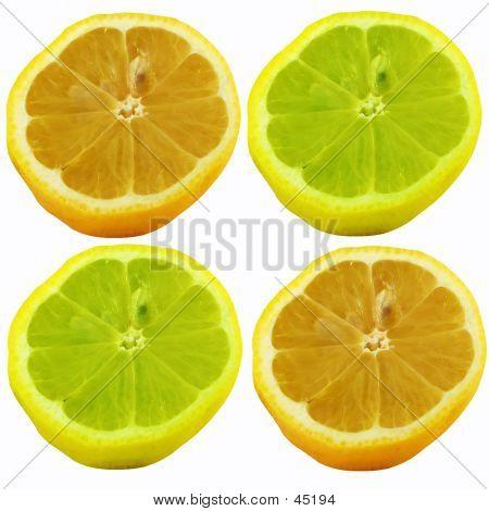 Lemons Abstract