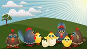 at the Spring Meadow is a family of hen with chickens cocks and chicken in the egg shell poster
