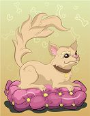 Luxuru golden chihuahua lying on a pink pillow poster
