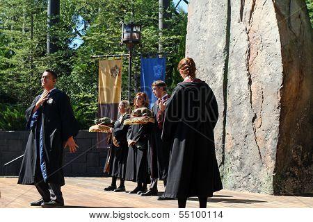 Harry Potter Singers
