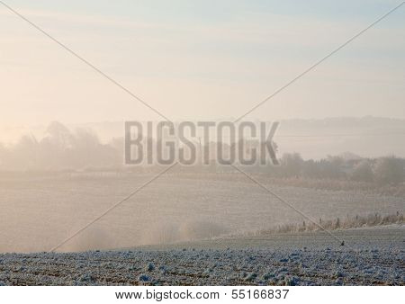 Morning Mist, Cotswolds