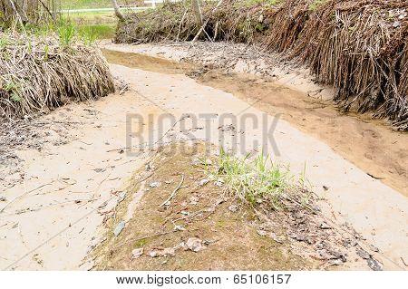 Silt Eroding Along Creek