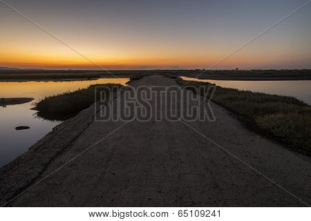 Empty Road At Dawn