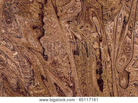 Gnarled Wood Closeup