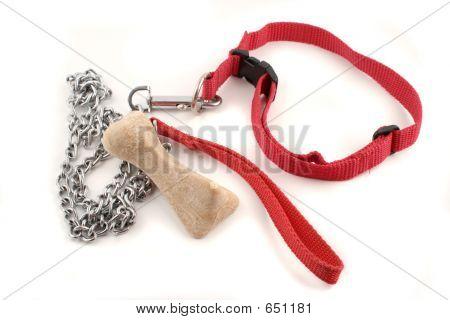 Dog Leash And Bone