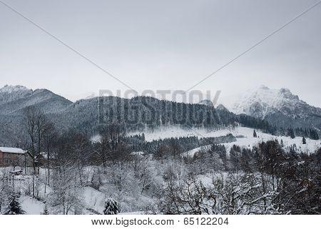 Winter landscape. Mountain village in the Bran,Romanian Carpathians