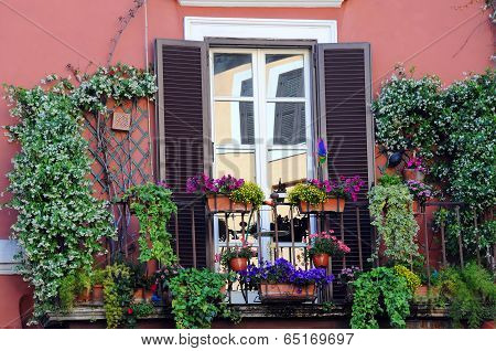Plants And Flowers On The Balcony