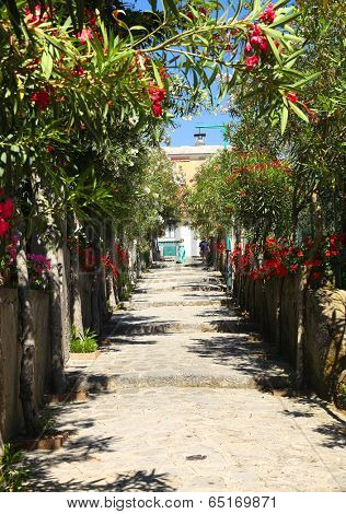 Street in Ravello, Amalfi Coast, Italy, Europe