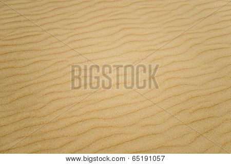 Soft Sand Textured Background. Yellow Color.