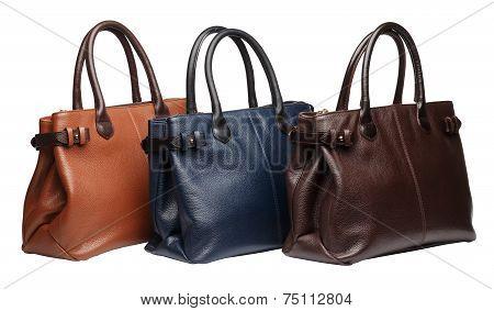 Natural Leather Female Purses