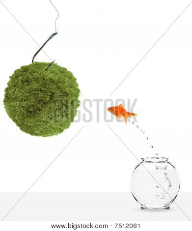 goldfish leaping towards green planet bait isolated on white poster