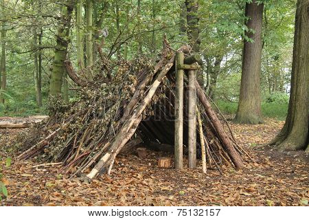A Forest Shelter Made From All Natural Materials. poster