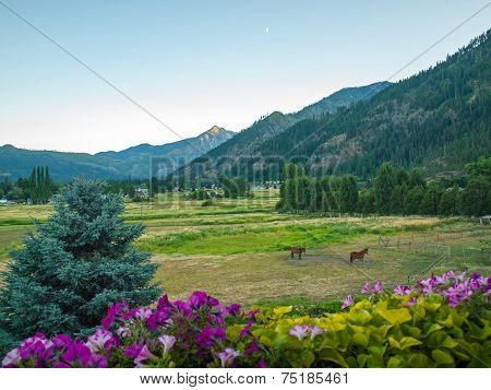 Horses In A Fenced Field With Mountains