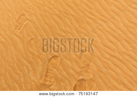 Photo Of Footprints On The Sand Of A Desert In The United Arab Emirates