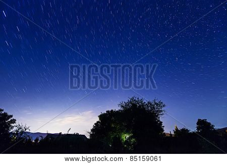 Night starry sky with trees silhouette
