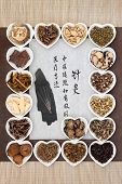 Acupuncture needles with chinese herbal medicine selection and calligraphy script. Translation describes acupuncture chinese medicine as a traditional and effective medical solution. poster